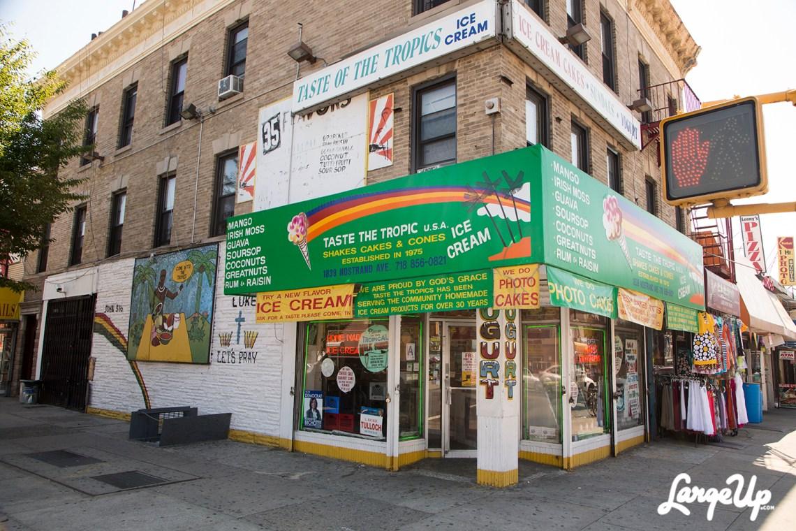 Taste-the-Tropics-Brooklyn