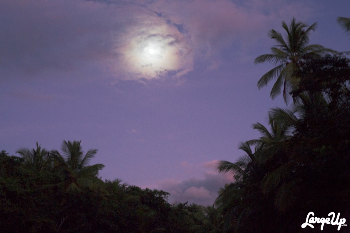 dominica-indian-river-moon-1