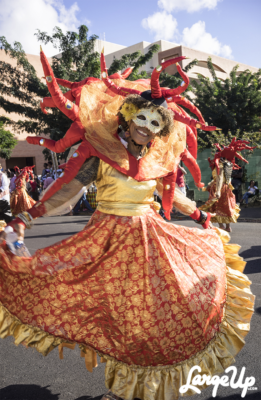 Masked in Gold at the Foyal Parade in Centre Ville, Fort-de-France, Martinique photo by Adama Delphine Fawundu
