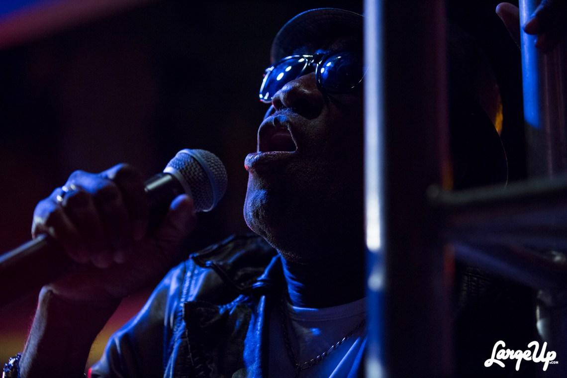 reggae-month-mandela-park-1