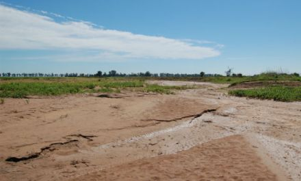 Sequía: la Comisión de Emergencia presentó su segundo pedido