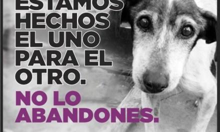 Campaña sobre Tenencia Responsable de Mascotas