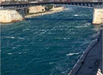 Mare in tempesta e alberi spezzati, ecco Taranto nel giorno del vento
