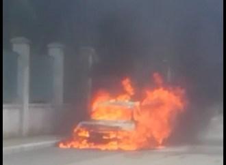 Marina di Ginosa, fiamme a due passi dal parco comunale
