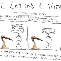 A cosa servono latino egreco?