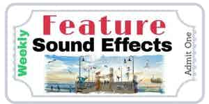 Larisa Web Sound Effects Editing