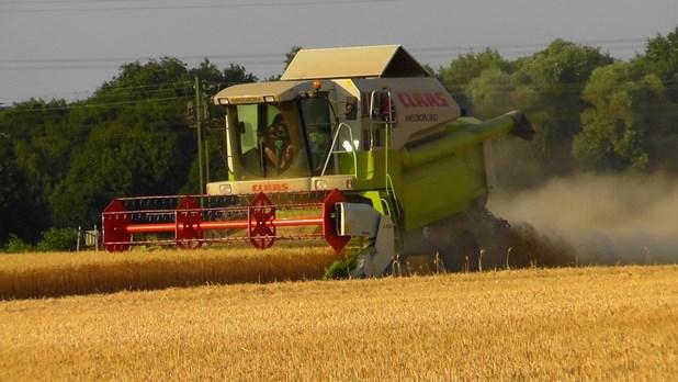 """Βαριές ποινές σε δύο """"εμπόρους"""" αγροτικών προϊόντων με πλαστές επιταγές"""