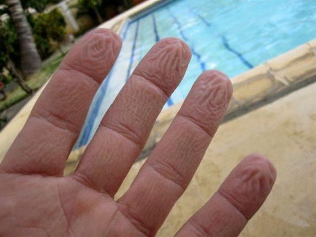 Τα «ρυτιδιασμένα» δάκτυλα χαρίζουν καλύτερο κράτημα