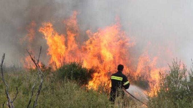 Φωτιά σε σιτοκαλαμιές έξω από τη Λάρισα