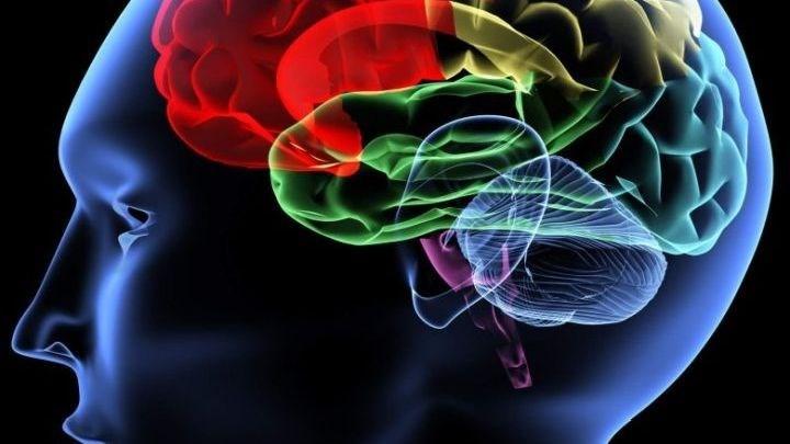 Έλληνες επιστήμονες θεράπευσαν βασικό σύμπτωμα της σχιζοφρένειας