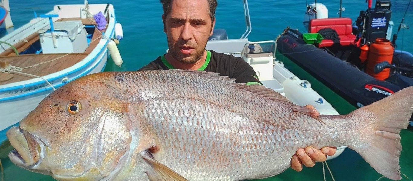 Έλληνας έκανε την ψαριά της ζωής του: Δείτε τη συναγρίδα που έπιασε (ΒΙΝΤΕΟ)