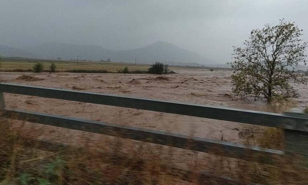 Φάρσαλα: Απεριόριστα τα πλημμυρισμένα σπίτια και τεράστιες ζημιές προκάλεσε η κακοκαιρία – Κινδύνεψαν αρκετοί ανθρωποι που εγκλωβίστηκαν
