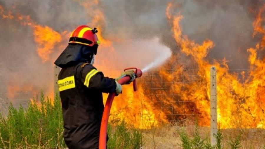 Λάρισα: Μεγάλη φωτιά στο δήμο Τεμπών
