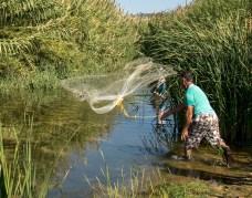 Pêche au filet à Gialova, dans la lagune