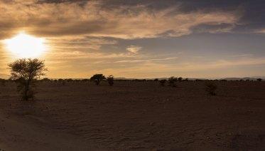 Tazarine... Un air d'Afrique