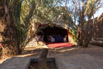 Camp Serdrar - Tazarine
