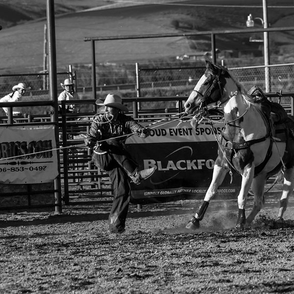 POTD: Rodeo Two-Step