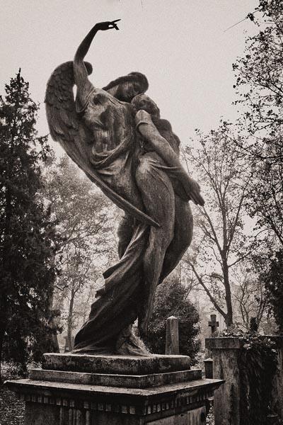 POTD: Kerepesi Cemetery #3