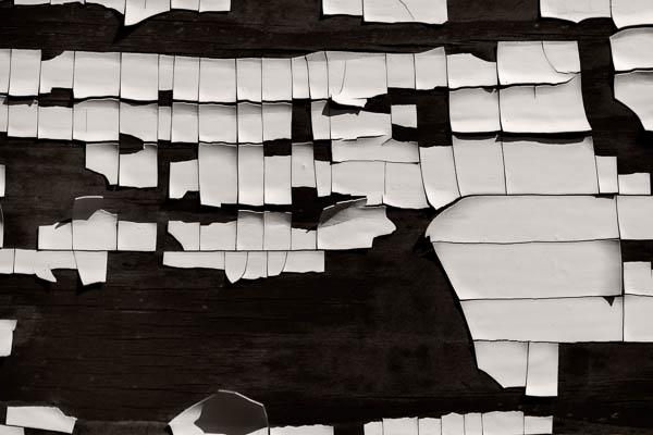 POTD: Mono-Mondrian #3