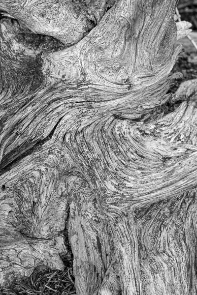 POTD: Organic Lava