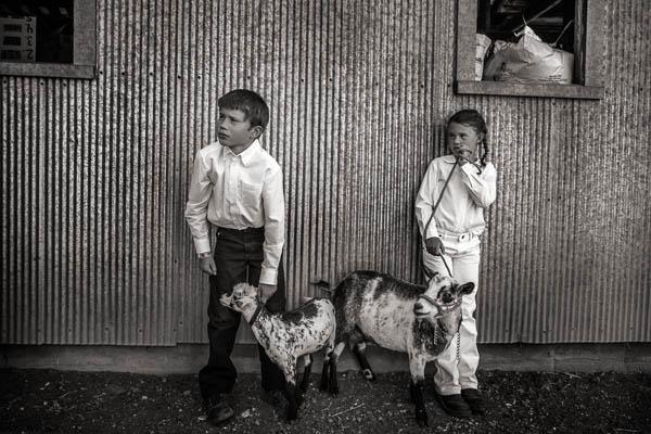 POTD: Don't Let Them Get Your Goat