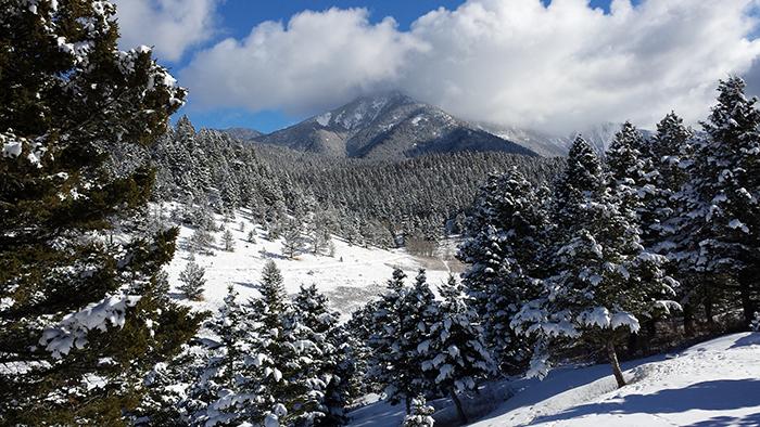 Livingston Peak by Barbara Boik
