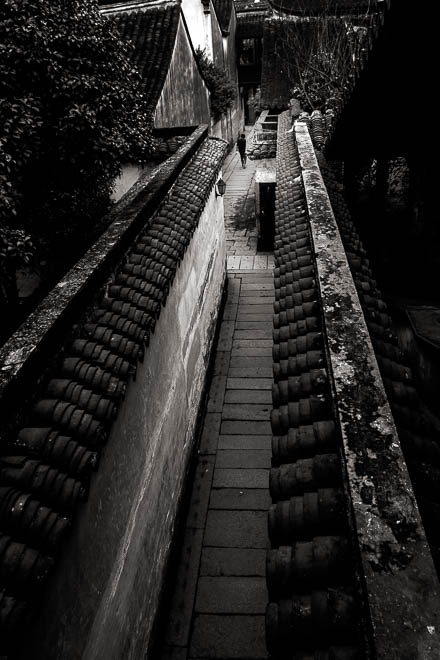POTD: Down the Alley
