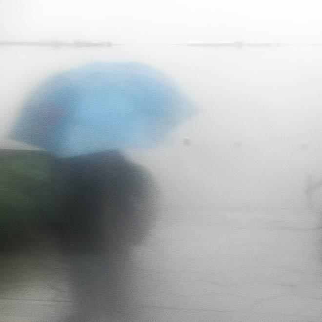 POTD: Waiting in the Rain