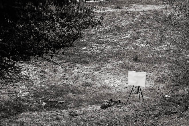 POTD: Blank Canvas