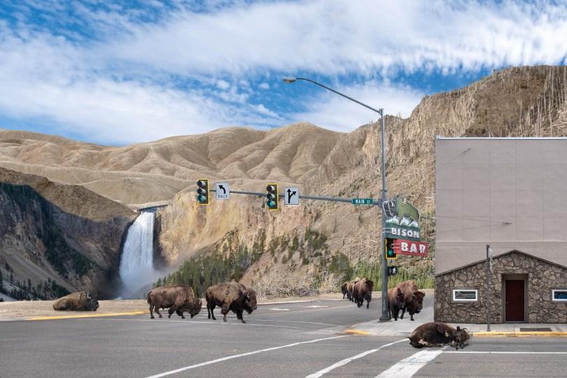 Yellowstone Dystopia #3
