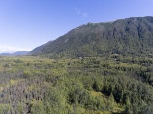 Bear mountain east end.