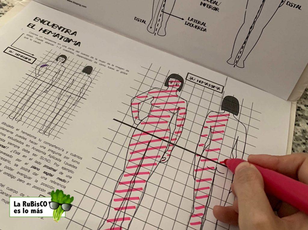 Anatomía Aplicada 1º Bachillerato Biogeociencia
