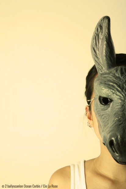 ANIMALUX - © 2/ballyscanlon/Ocean/Corbis / Cie La Ruse