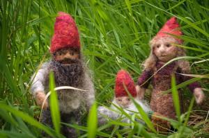 Dwarf family