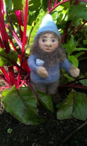 Gnome-with-blue-lace-achate in the beetroots