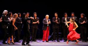 flamenco cuadro