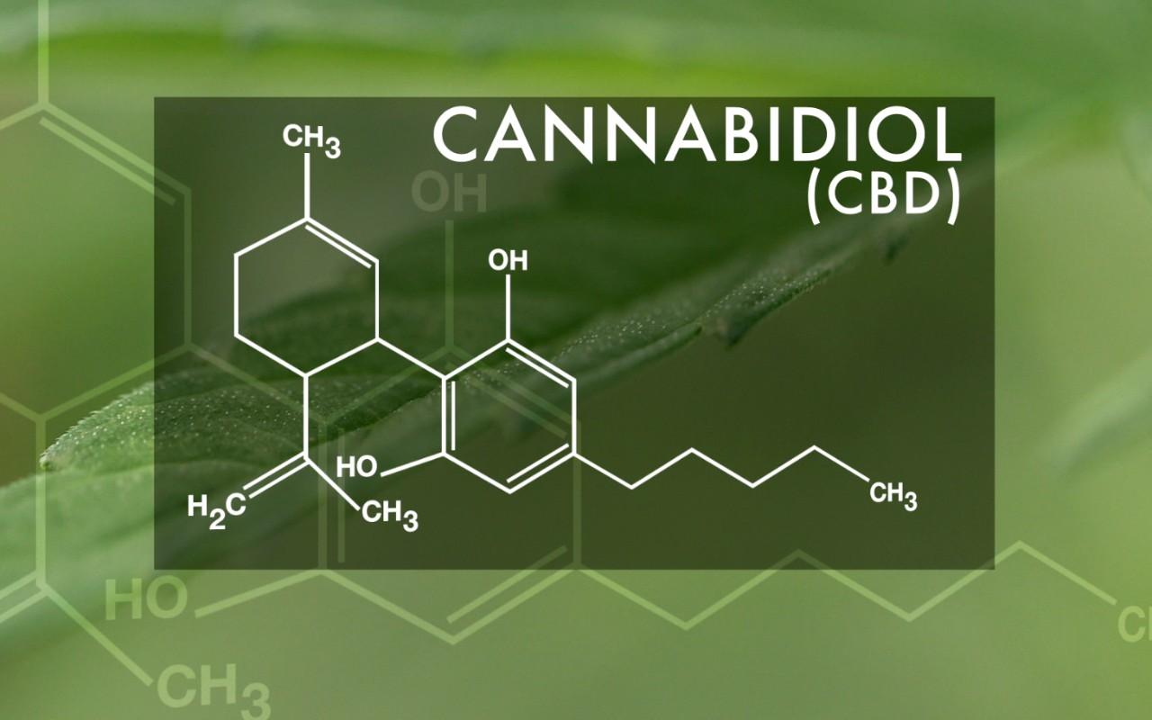 Investigadores de Alicante demuestran que el cannabis tiene propiedades antiadictivas