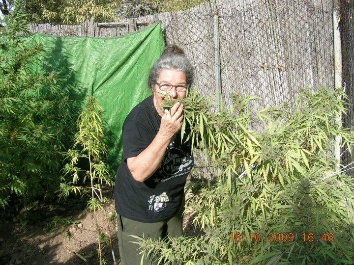 """Fernanda de la Figuera """"Abuela Marihuana"""" pendiente de juicio"""