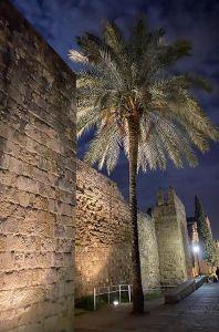 mi morena Sentir el Sur mi sur Córdoba de noche