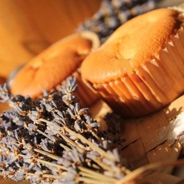 Craquez pour les madeleines à la fleur d'oranger