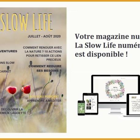 icono-magazine2
