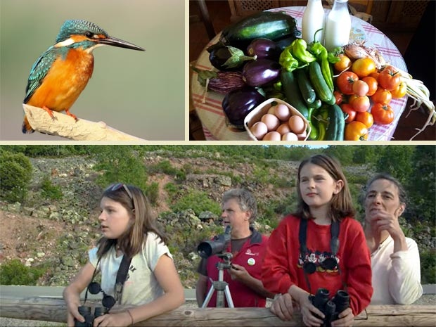 naturaleza y birding