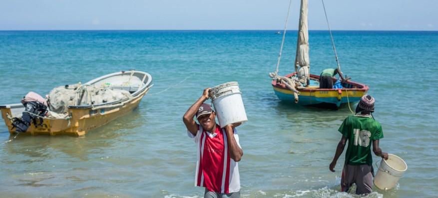 La pesca sostenible está mejorando los medios de vida en Haití.