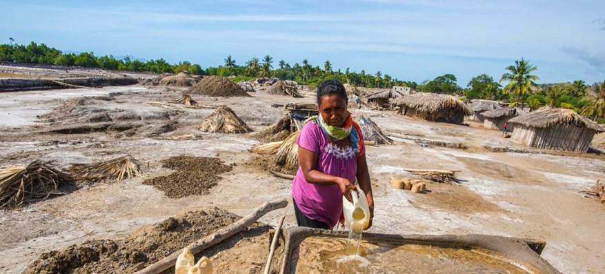 Una mujer cosecha sal en un manglar de Timor-Leste.