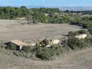 Colmenar para la práctica de la apicultura en Las Pedrosas