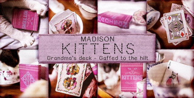 Madison Kittens Playing Cards presentazione mazzo