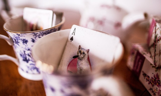 Madison Kittens Playing Cards Asso