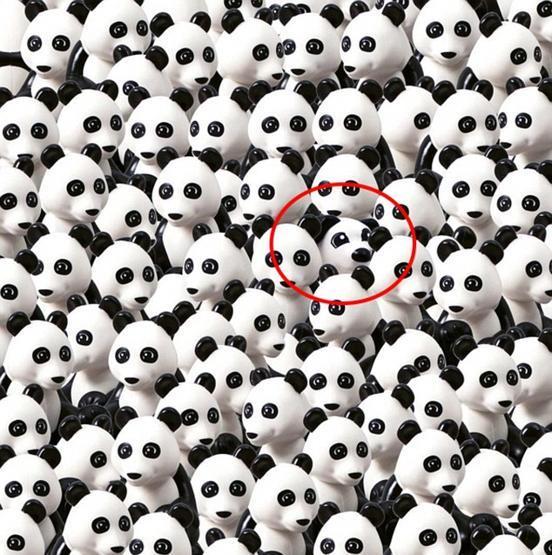 Riesci a trovare il cane fra i panda, ecco la versione della Lego - La  Stampa