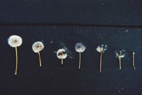 Tre consigli ai blogger [adoro la sintesi]