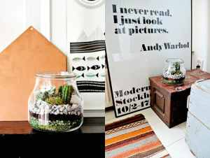 DIY: mini terrarium